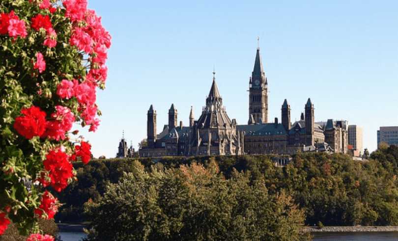 Top Accounting Firms in Ottawa
