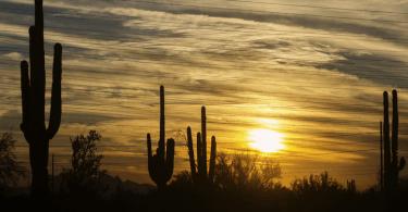 Top Financial Advisors in Phoenix and Scottsdale, Arizona