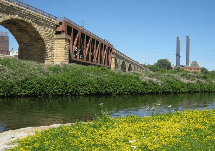 Fee Onlu Financial Planner in Minnesota