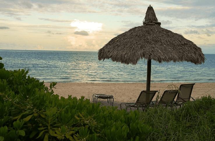 Best Wealth Management Firms in Miami, FL