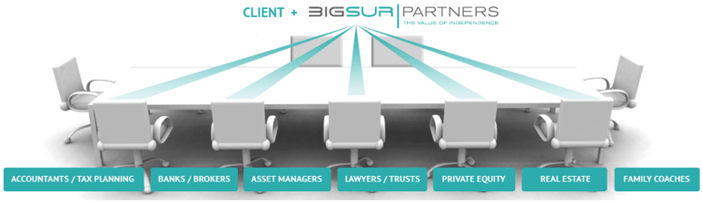 BigSur Partners Customized Services-min