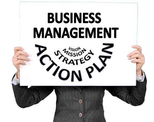 What Does a Business Management Consultant Do for Business?