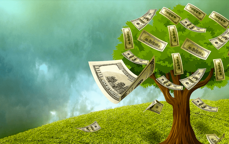 seed investment