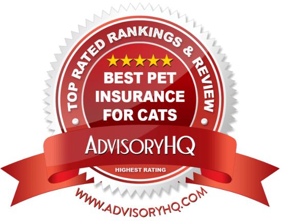 Best Pet Insurance For Cats