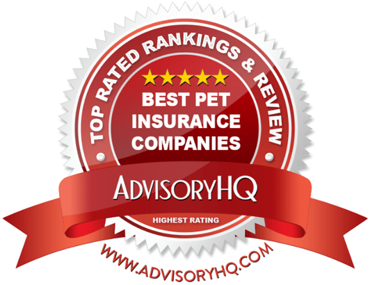 top rated pet insurance