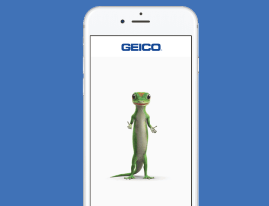Geico young driver insurance