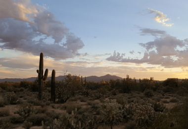 Best Mortgage Rates in Tucson