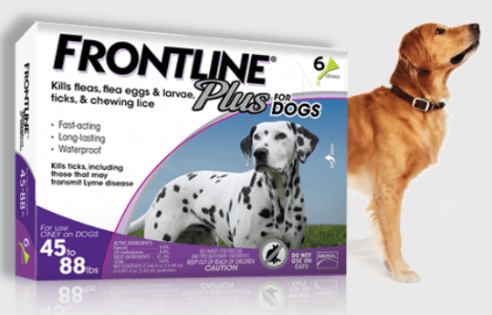 frontline spot on top for dogs