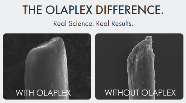 olaplex before and after